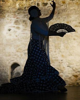 flamenca.jpg
