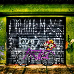 "Obra ""Bike Pink"", 2008"