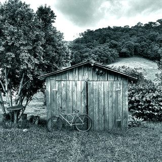 Bicicleta no sítio
