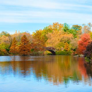 Jardim Central Park | New York