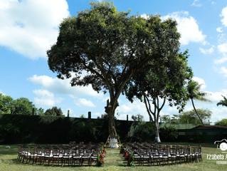 Decoração de casamento em Aldeia