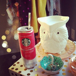 Whoot Warmer Scentsy
