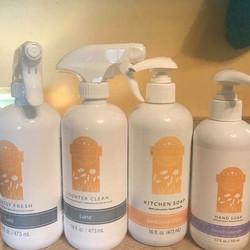 scentsy clean nissa rinaldi