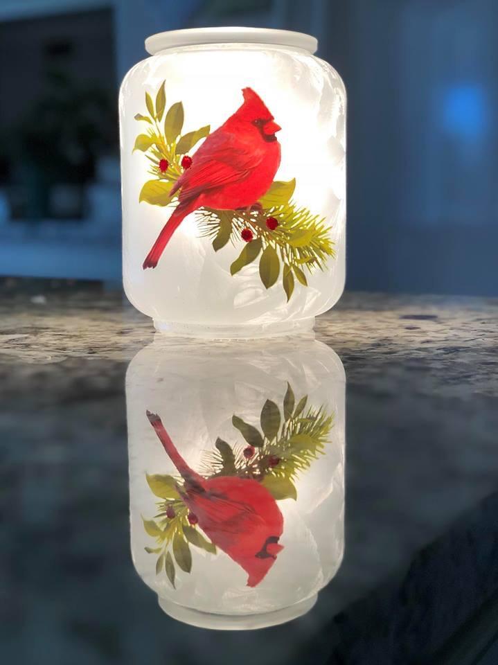 Cardinal warmer