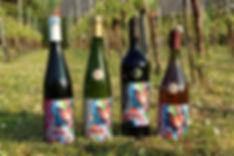 prijzen domein pot de vin