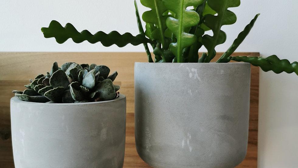 Duo gevulde potjes grijs