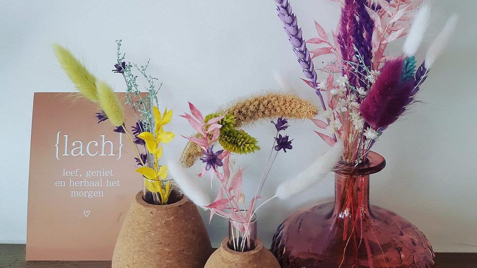 Trio vaasjes met droogbloemen