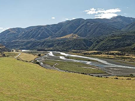 NZ's new plan for clean water with Scion