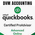 DVM ACCOUNTING WHYALLA.png