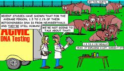 Bison DNA 1.3