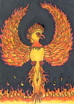 John's Phoenix