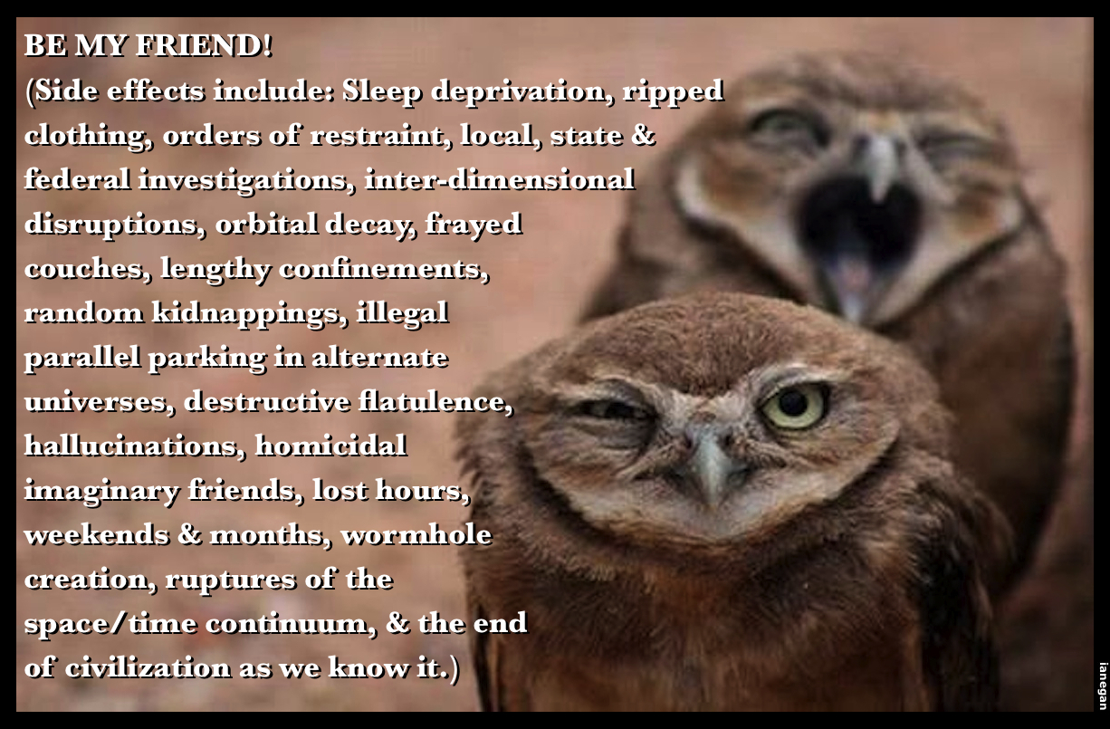 Be My Friend Owls.jpg
