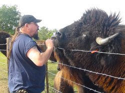 Ian Feeding Our Bull Braveheart