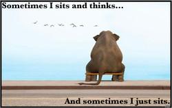 Sits & Thinks.jpg