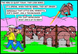 Henrietta Rocket