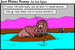 Bison Instincts