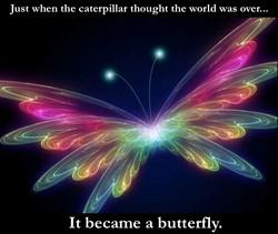 Neon Butterfly.jpg