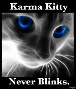 Karma Kitty 1.jpg