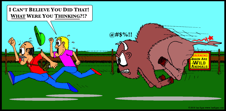Tickle Bison 2