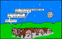 Buffalo Roaming Charges