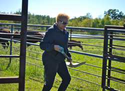 Moving Range Cubes Around The Corral