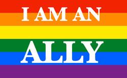 LGBT Ally Flag.jpg