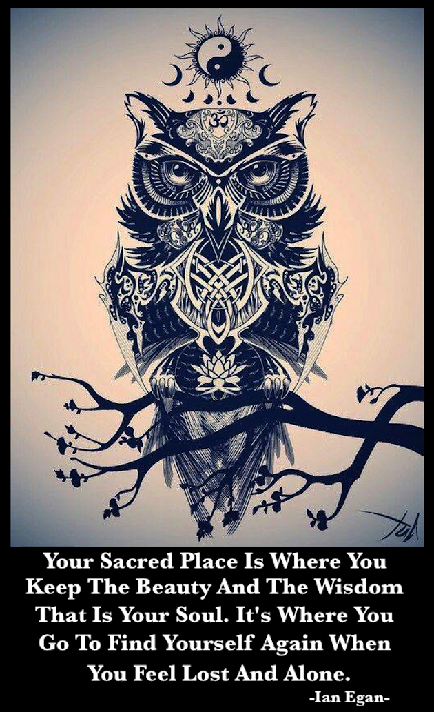 Owl Of Tao