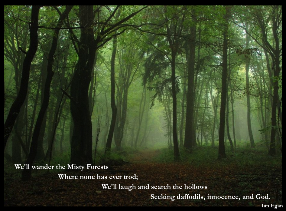 Misty Forests.jpg