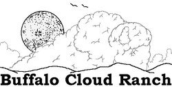 Buffalo Cloud Ranch