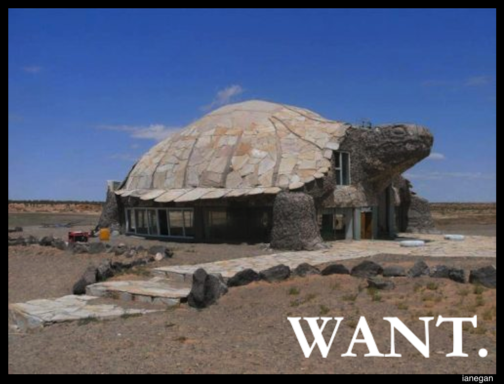 Want Turtle House.jpg