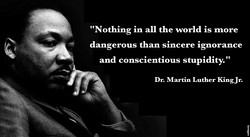 MLK-Ignorance & Stupidity.jpg