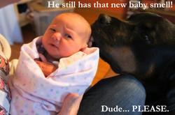 New Baby Smell.jpg