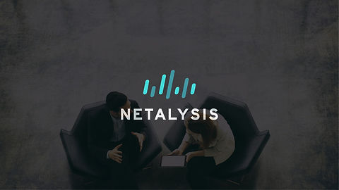 Netalysis_Corp_edited.jpg
