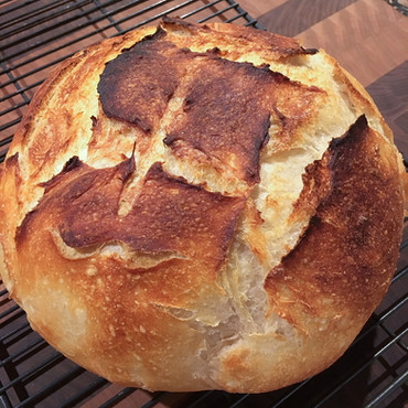 perfecting the no-knead sourdough