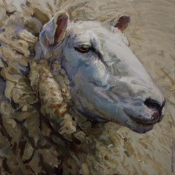 Sheep - Working Animal 01