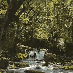 SOLD - Staircase Creek, Lake Wakatipu