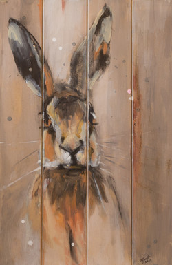 SOLD - Young Hare