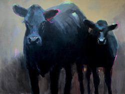 SOLD - Cow and Calf