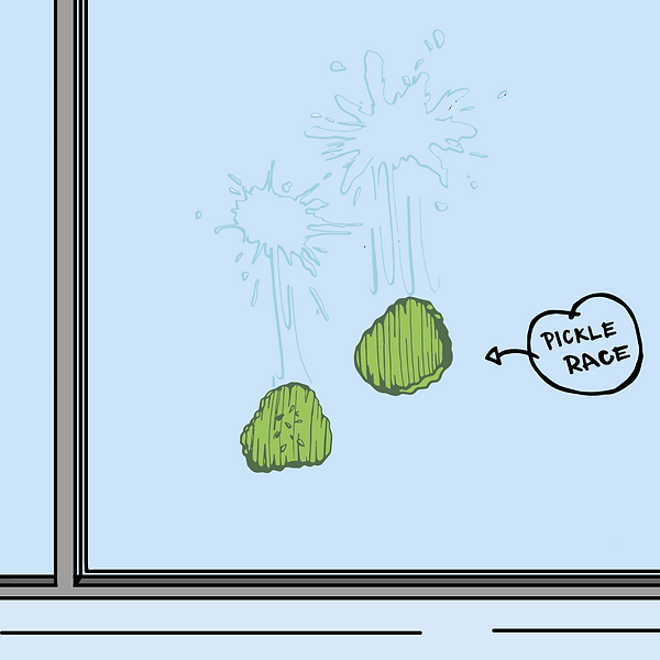 Pickle slide window.png