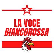 la voce biancorossa (logo def png).png