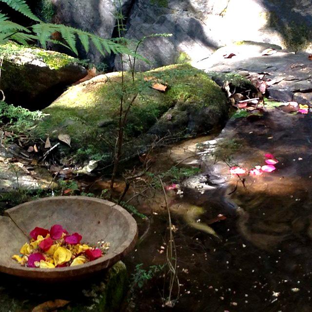 Ritual da água