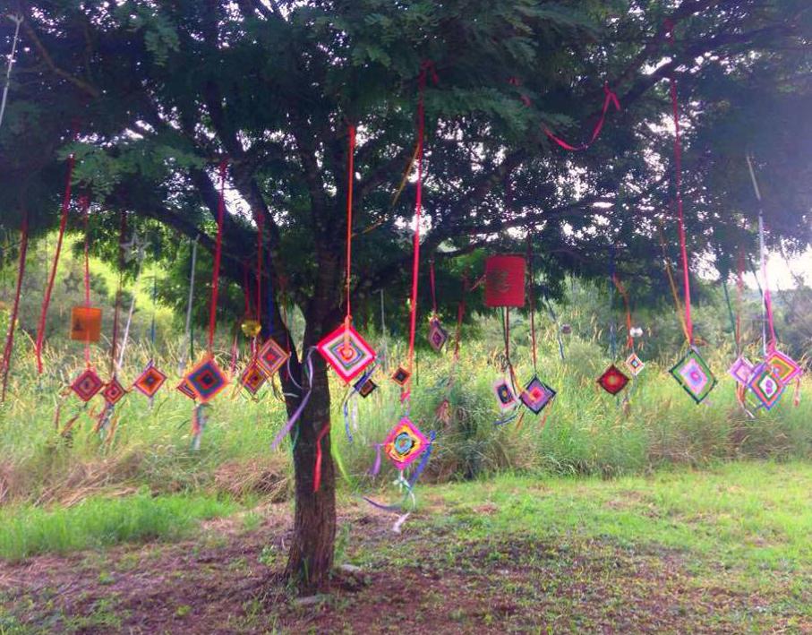 Vivência -  A Árvore dos Desejos