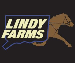 lindy 300x250-01.jpg