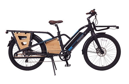 Magnum-Payload-Cargo-Electric-Bike.jpg