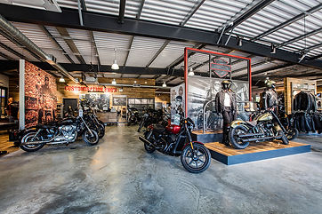 Harley-3.jpg