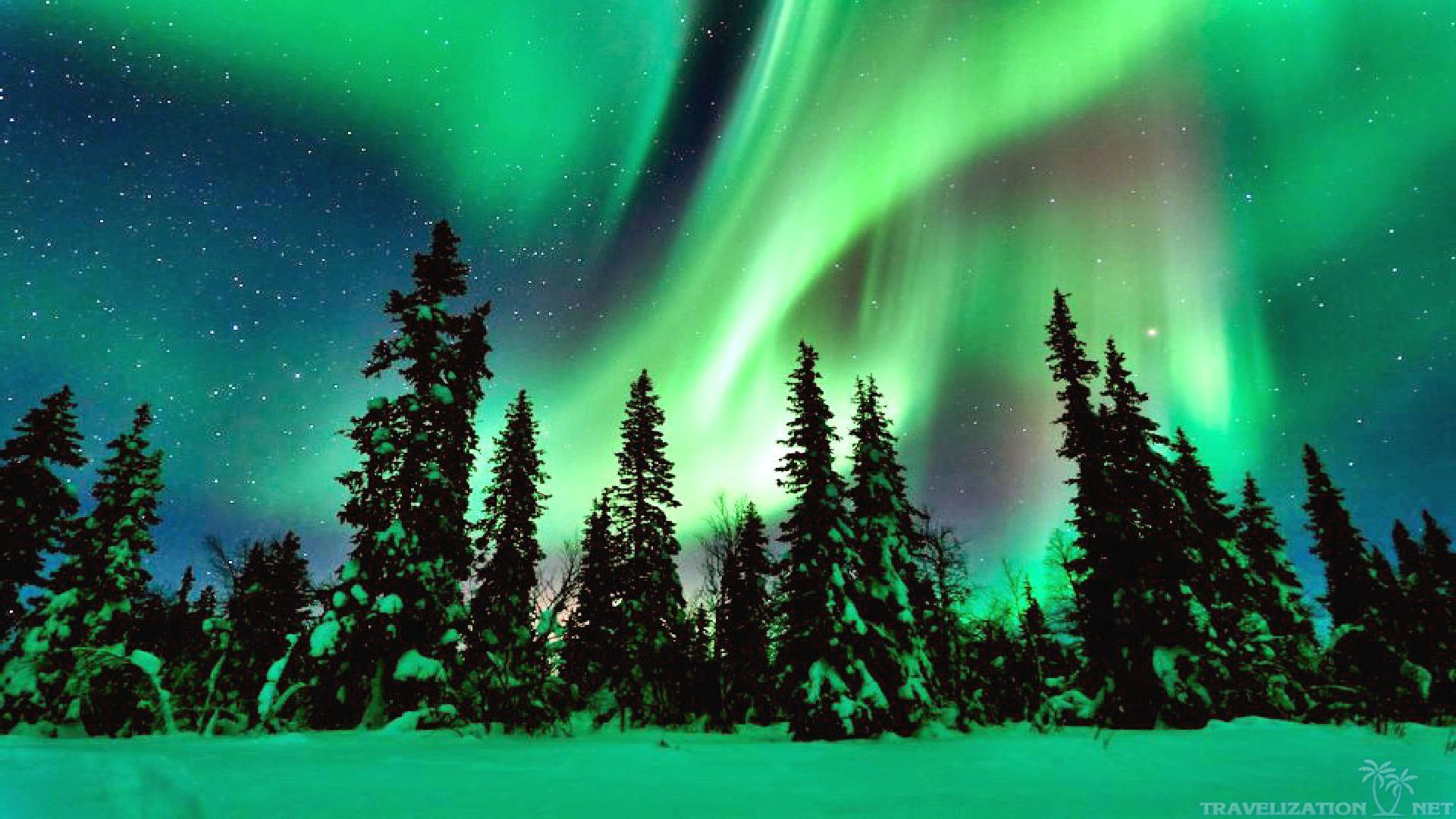 Northern Lights, Dan Wolf Alaska