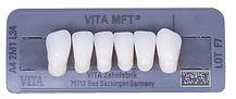 zęby do protezy zębowej