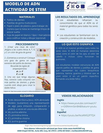 SPANISH DNA STEM ACTIVITY - COMPLETE.jpg