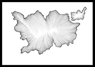 borders dessin frontière lines