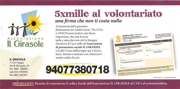 flyer_5x1000_WEB.jpg